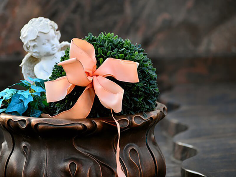 UNATTENDED DIRECT CREMATIONS SOMERSET